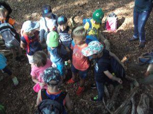 Gruppenbildung